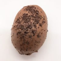 milk chocolate oreo easter egg for sale indiana